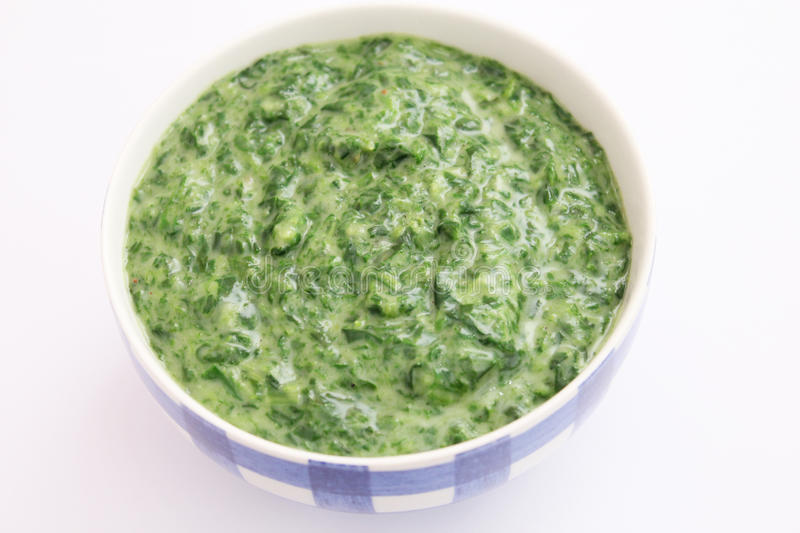 Spinach with cream royalty free stock photography