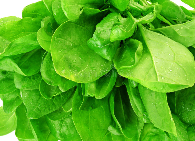 Download Spinach Detail Of Leaves Royalty Free Stock Photos - Image: 14315408