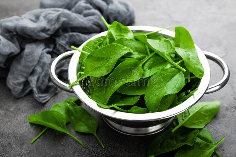 spinach Folhas frescas do espinafre na bacia fotos de stock royalty free