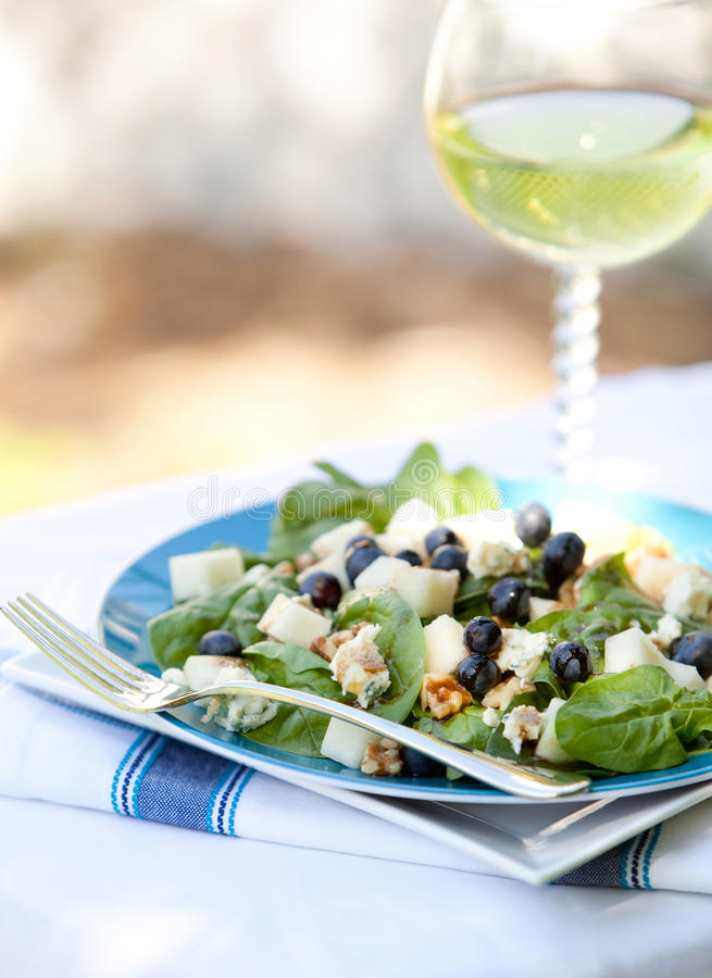 Download Spinach And Grogonzola Cheese Salad Stock Image - Image: 14146039