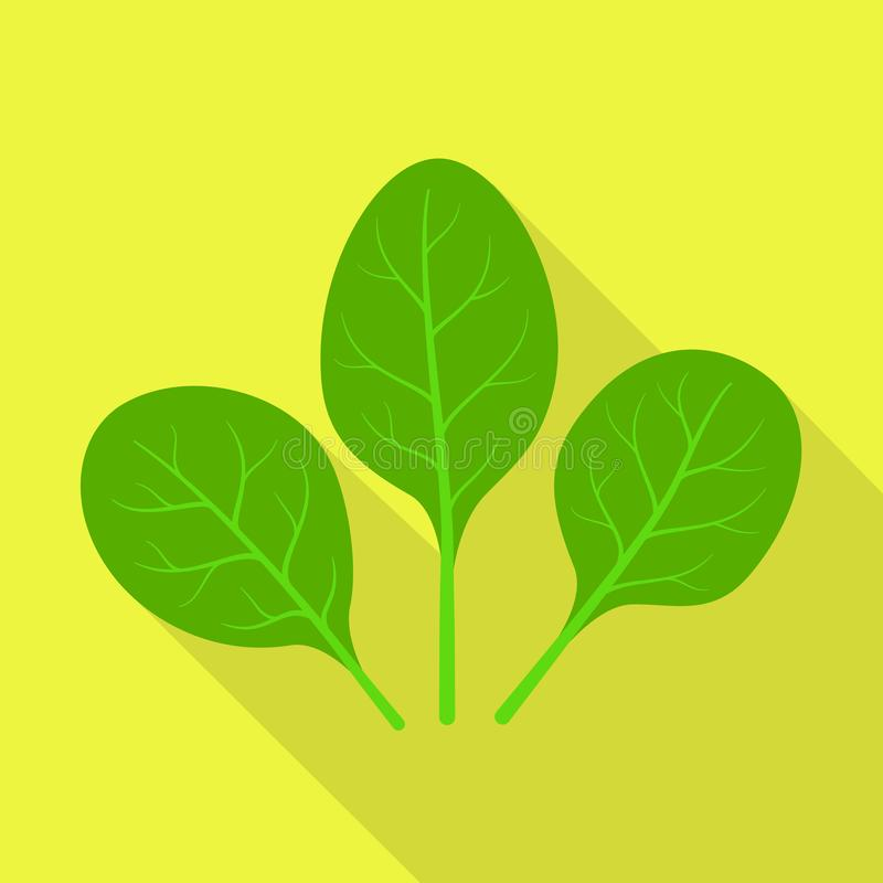 Spinach icon, flat style stock illustration