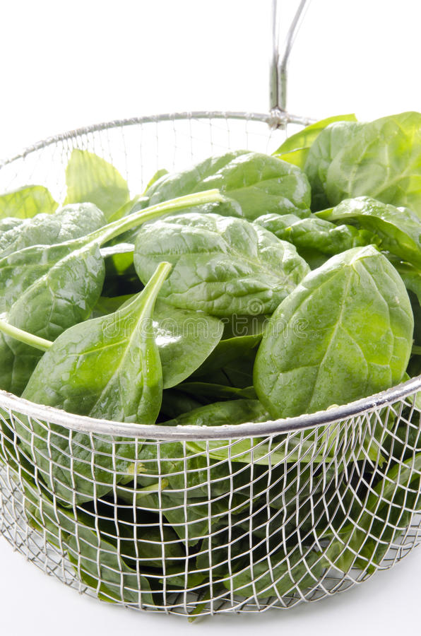 Spinach in a metal sieve after washing
