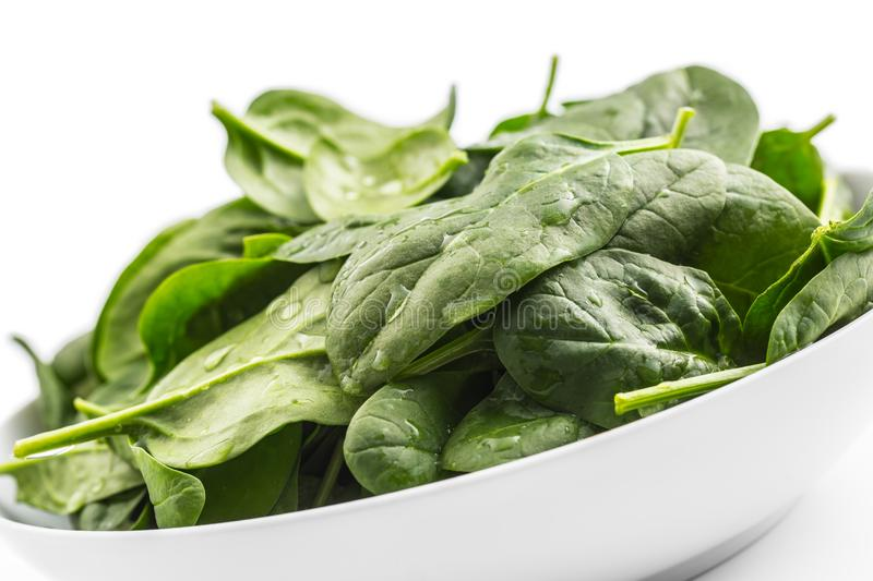 spinach O espinafre fresco do bebê sae na placa isolada no branco fotografia de stock