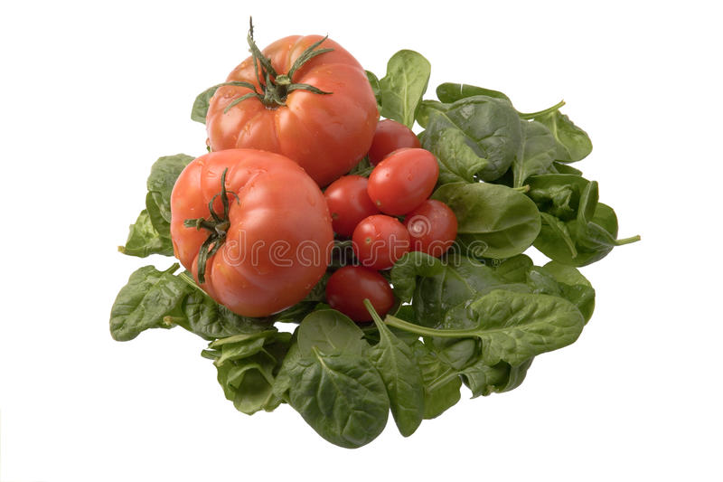 Spinach and tomatoes stock photos