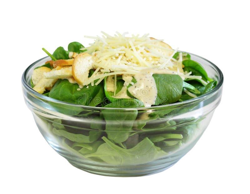 Spinat-Salat stockbilder