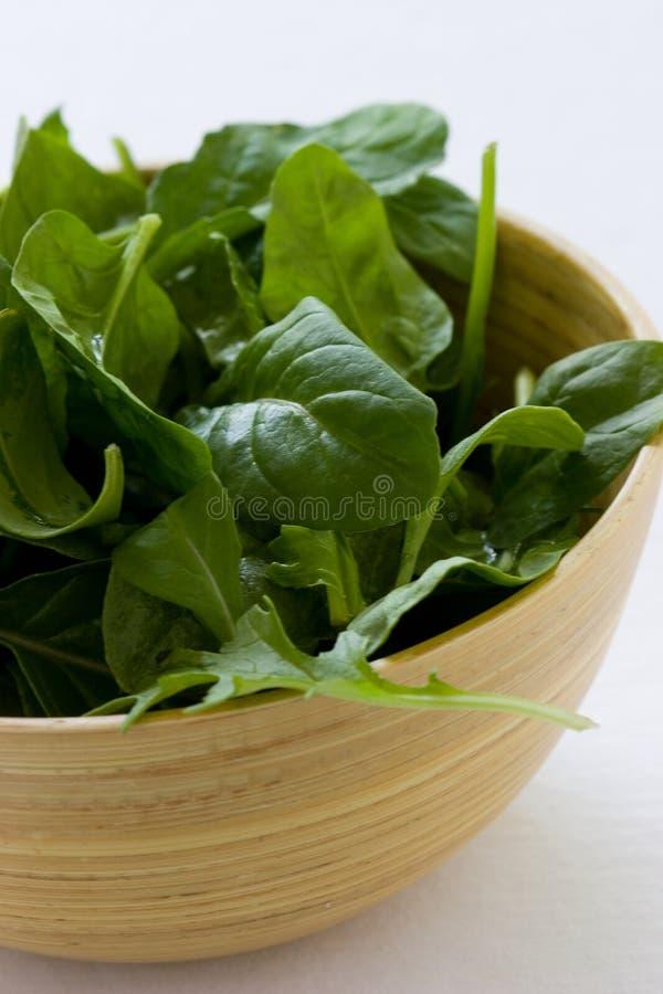 Download Spinat-Salat stockbild. Bild von bambus, weiß, grüns, frisch - 3258153