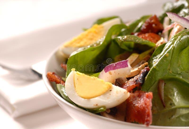Spinatsalat mit Pilzen lizenzfreie stockfotos