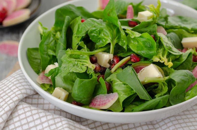 Spinatssalat auf weißer Platte, Abschluss oben stockfotos