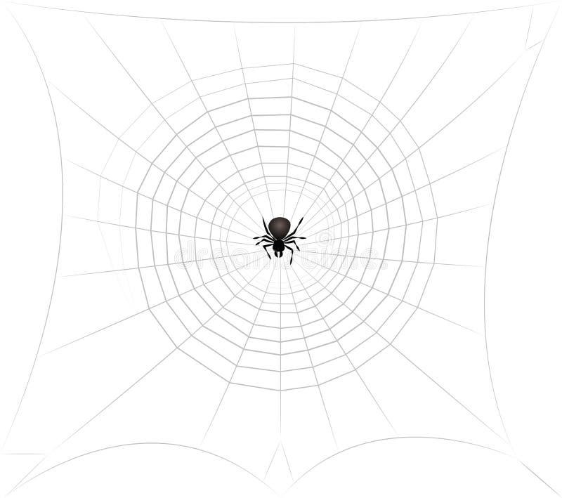 Spindel, i att lura för mitt för spindelrengöringsduk stock illustrationer