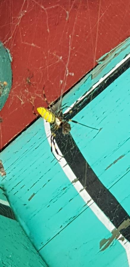 Spindelarbete arkivfoto