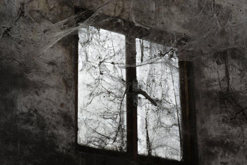 Spindelnäten och dammet på fönstret i souken royaltyfria bilder