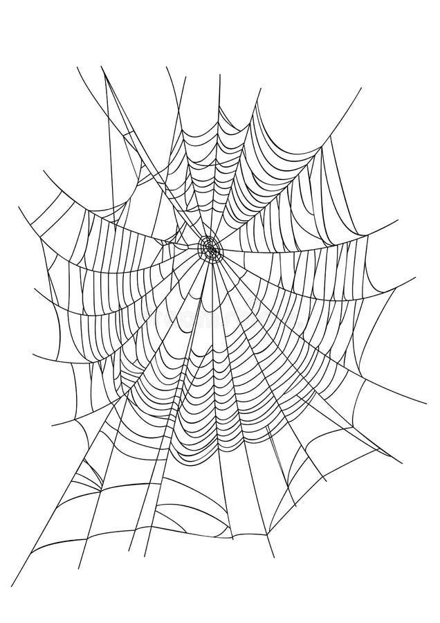 Spindelrengöringsduk vektor illustrationer