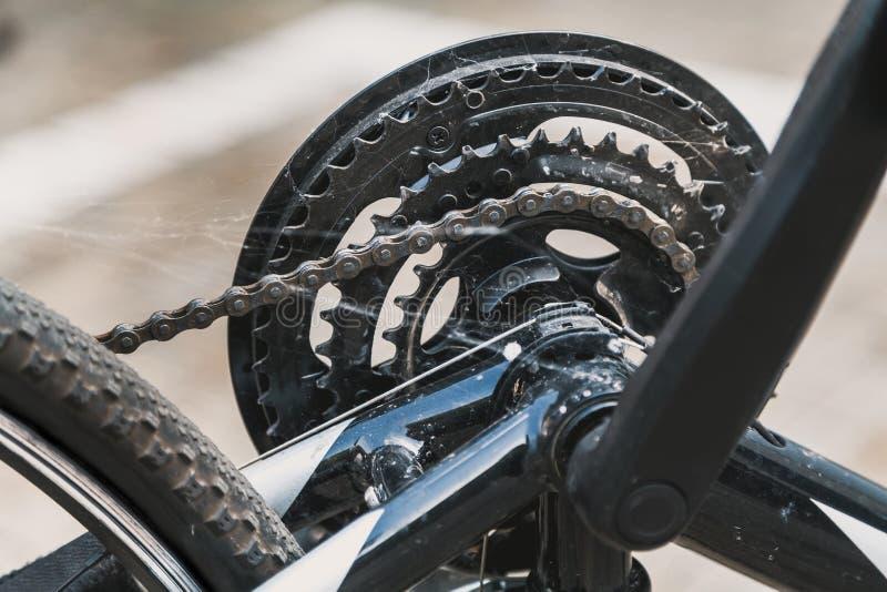 Spindelrengöringsduk på cykelkugghjulet royaltyfria foton