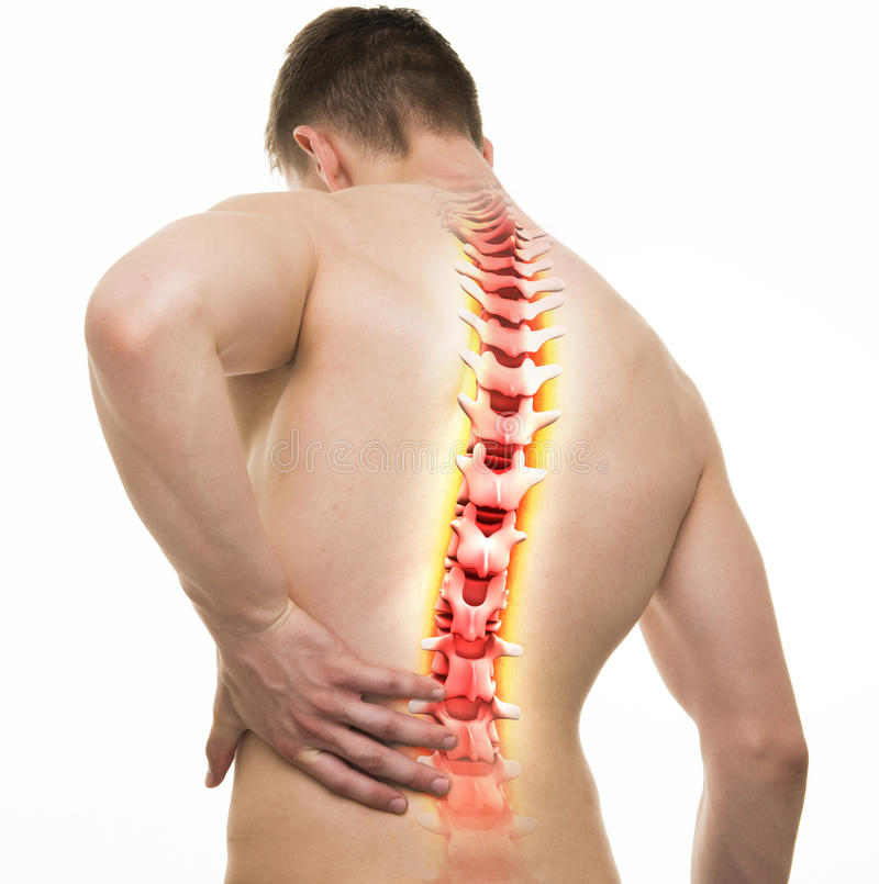 Spine Injury - Studio shot with 3D illustration isolated on whit stock illustration