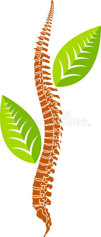 Download Spine leaf logo stock illustration. Image of body, biological - 25541913
