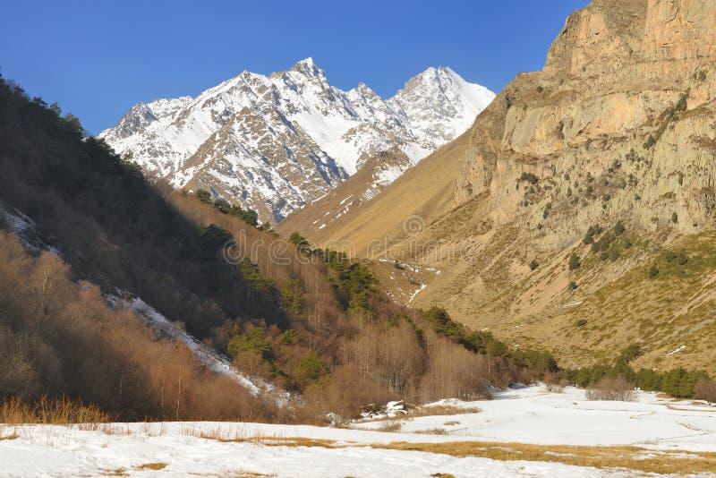 Sping i Kaukasus arkivbild