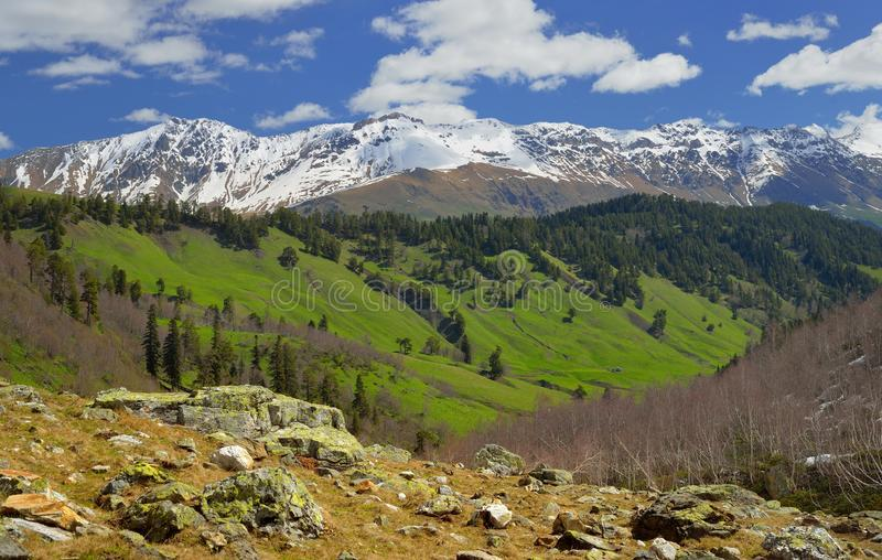 Sping i Kaukasus arkivfoton