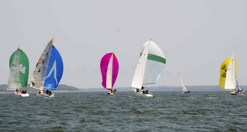 Spinnakeres en la dirección del viento foto de archivo
