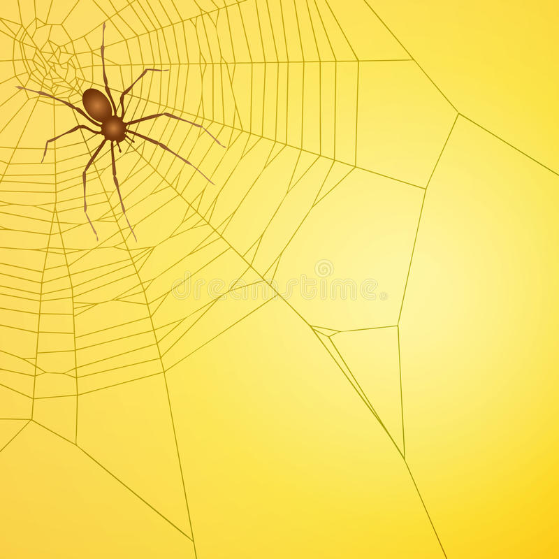 Spinne lizenzfreie abbildung