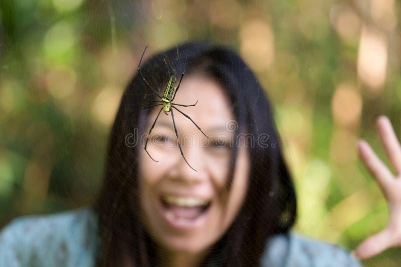 Spinnenüberraschung stockbild