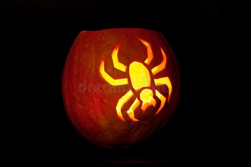 Spinnen-Halloween-Kürbis stockfotos