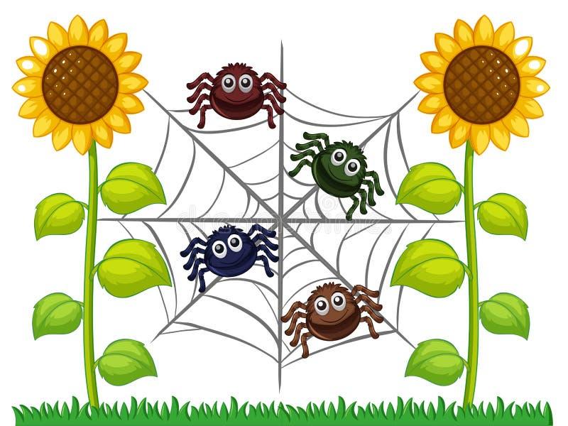 Spinnen op Web in zonnebloemtuin royalty-vrije illustratie