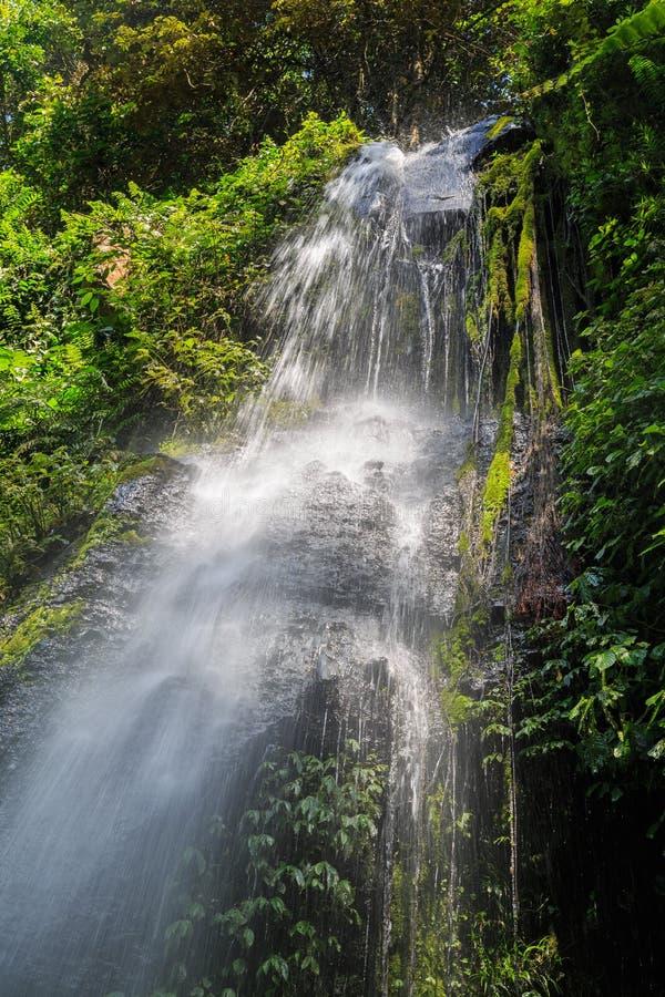 Spinnen Sie Netzwasserfall auf der indonesischen Insel Lombok stockfoto