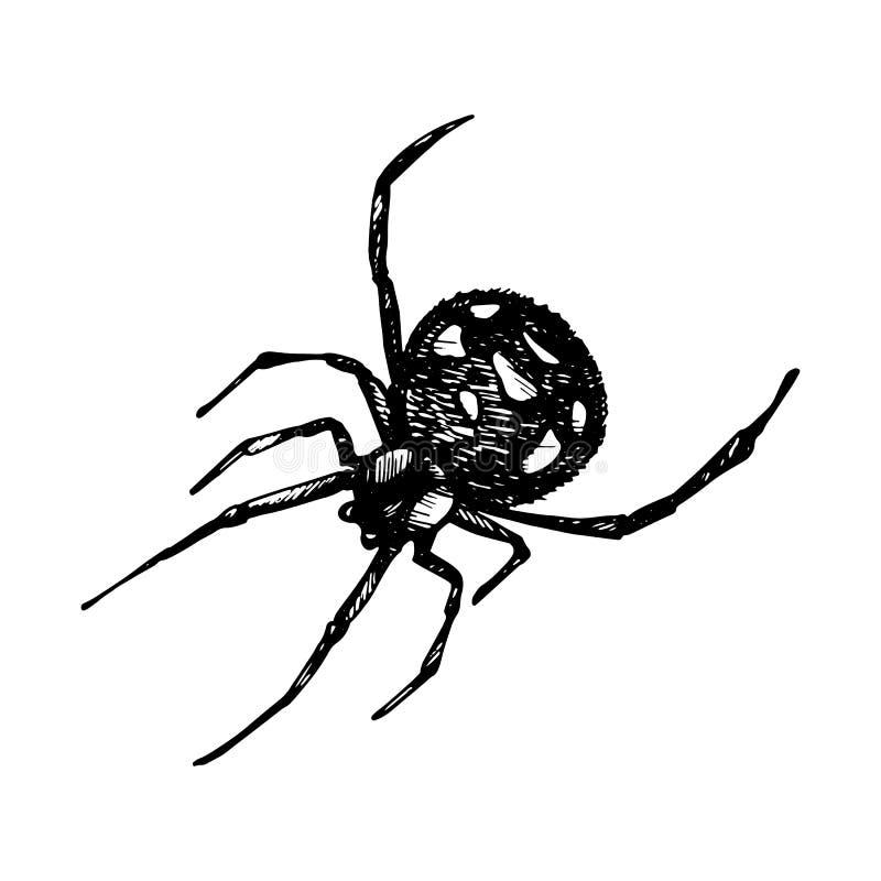 Spinnenikone stock abbildung