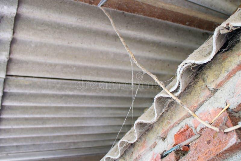 Spinnennetz auf dem Dach stockfotos