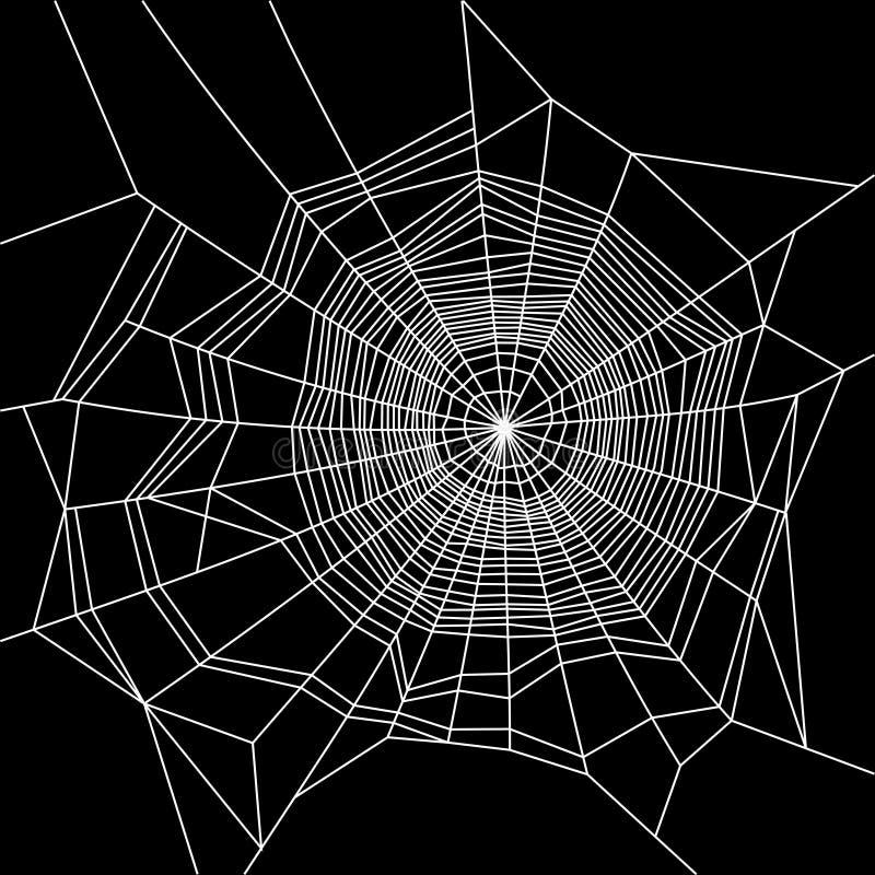 Spinnennetz Weiß auf schwarzem Hintergrund Vektor stock abbildung