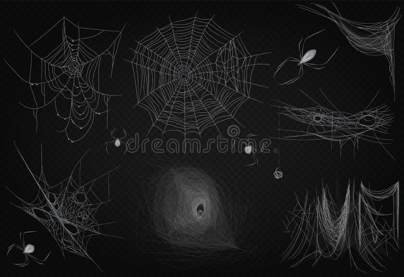 Spinnennetzsatz lokalisiert auf schwarzem transparentem Alphahintergrund Spiderweb für Halloween-Design Spinnennetz der hohen Qua lizenzfreie abbildung