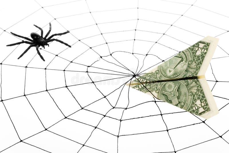 Spinnenweb und -dollar lizenzfreie stockfotos