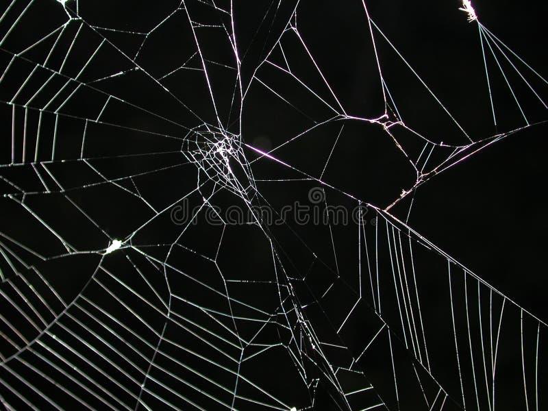 Spinneweb bij de Textuur van de Nacht stock foto's
