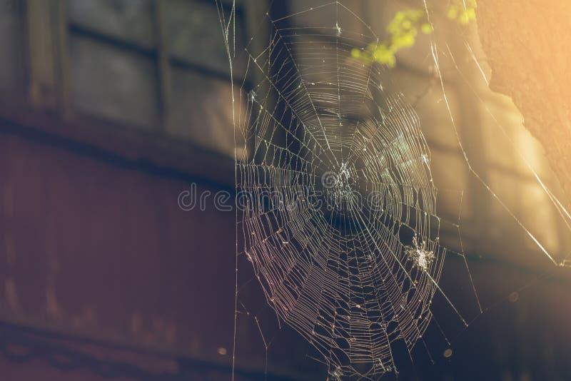 Spinneweb op achtergrond van oud huis stock fotografie
