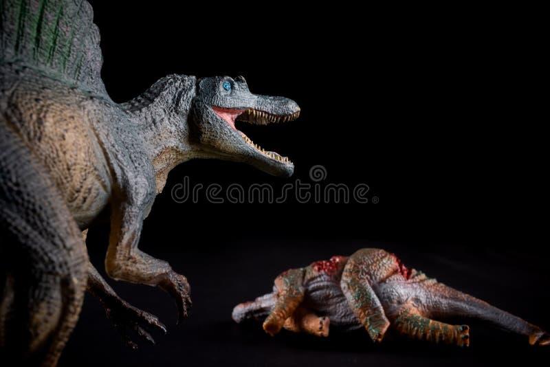 Spinosaurus μπροστά από ένα σώμα stegosaurus στο σκοτάδι στοκ εικόνες