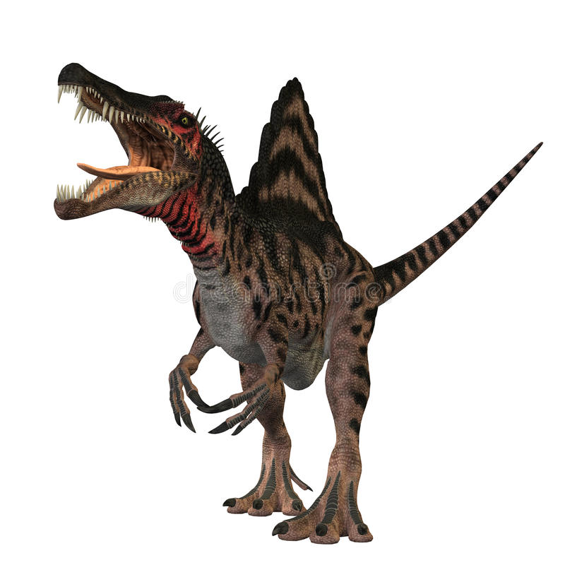 Spinosaurus 01 vector illustration