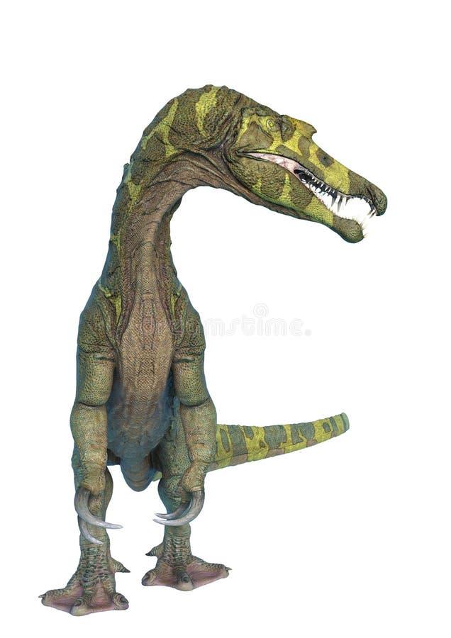 Spinosaurus en el fondo blanco y ningunas sombras stock de ilustración