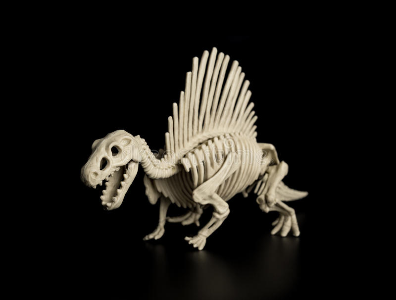 Spinosaurus kościec zdjęcia stock
