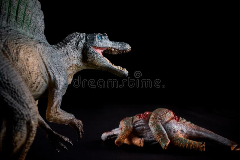 Spinosaurus na frente de um corpo do stegosaurus na obscuridade foto de stock