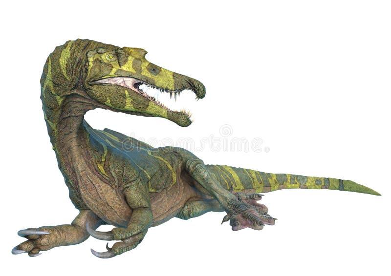Spinosaurus no fundo branco e nas nenhumas sombras ilustração do vetor