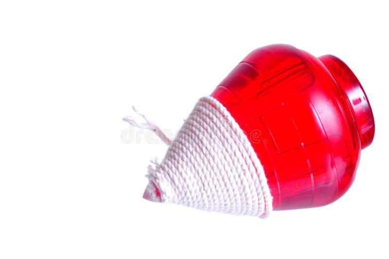 Spinowy wierzchołek zdjęcie stock