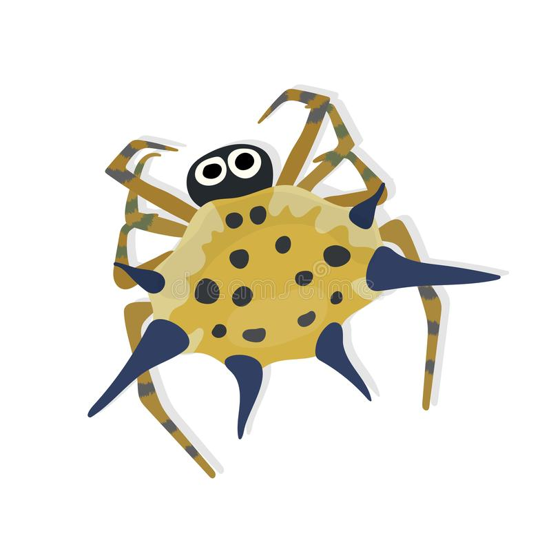Free Spiny Orb Weaver Spider Isolated Stock Photography - 138218232
