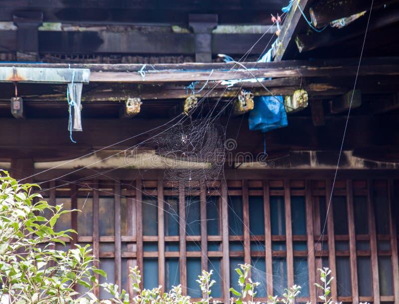 Spinzitting op een spinneweb bij de oude historische bouw stock fotografie