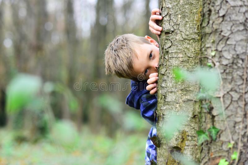 Spioneren is opwekkend Kleine spion Kleine kindhuid achter boom in bos Klein jongensspel die spel veronderstellen Ik spioneer met royalty-vrije stock fotografie
