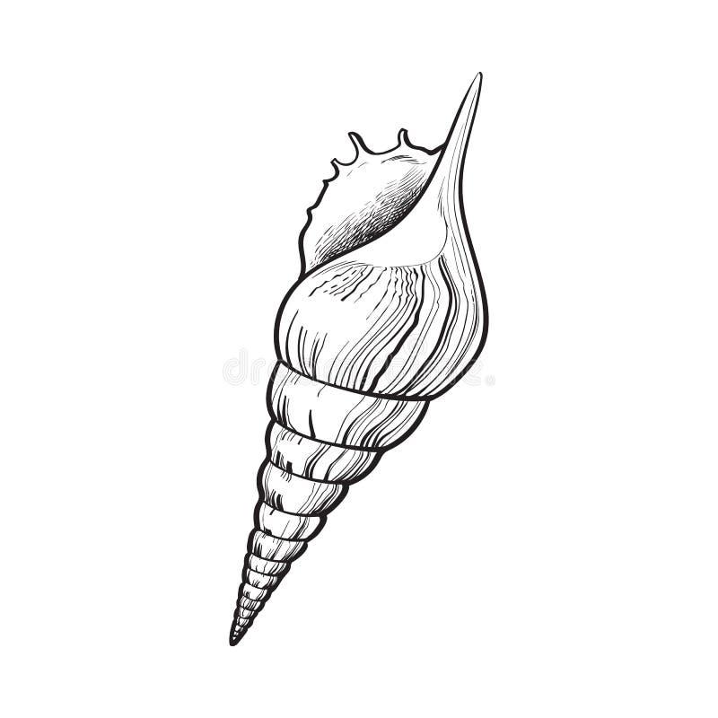 Spiraalvormige kroonslak overzeese shell, de geïsoleerde vectorillustratie van de schetsstijl vector illustratie