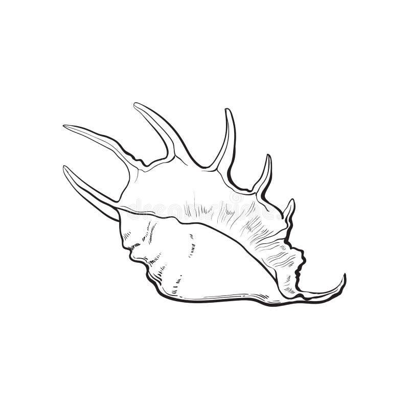 Spiraalvormige kroonslak overzeese shell, de geïsoleerde vectorillustratie van de schetsstijl royalty-vrije illustratie