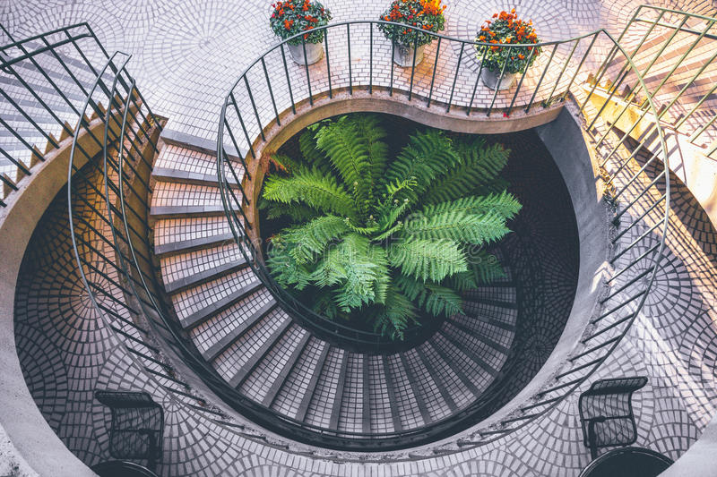 Spiral Staircase Outside Looking Down At Plants Daytime Free Public Domain Cc0 Image