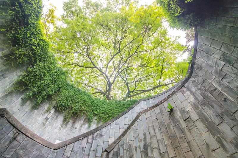 Spiral staircase of underground crossing and the tree over in tunnel at Fort Canning Park, Singapore royalty free stock images