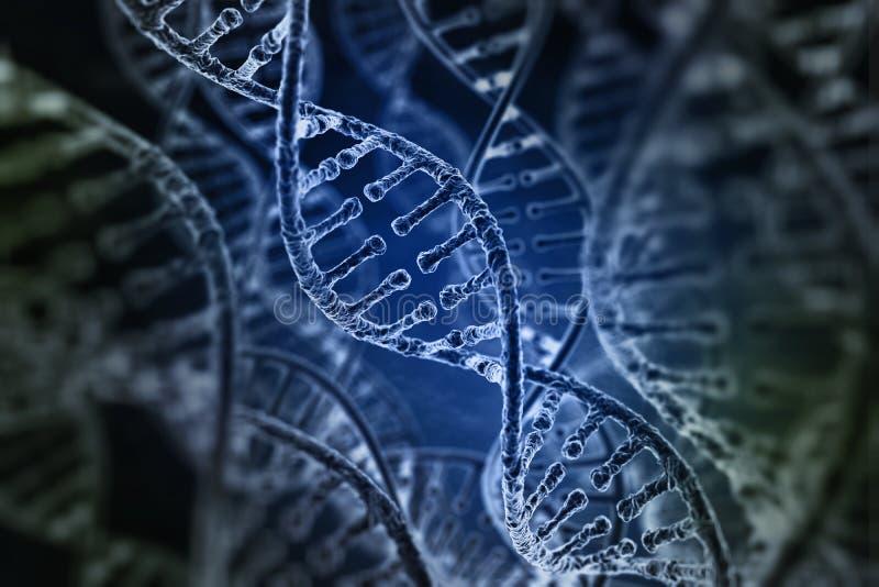 Spiral strands of DNA vector illustration