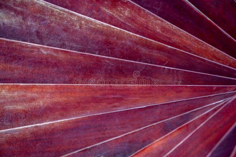 Spiral textur av röda trästänger för Grunge för bakgrund royaltyfri foto